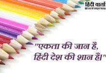 Hindi Bhasha Essay