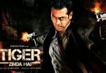 Tiger Zinda hai- Fan Made Poster